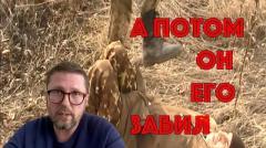Анатолий Шарий. Эта служба президенту не подчиняется от 27.01.2020