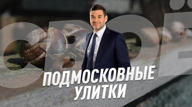Соловьёв LIVE 10.05.2020. Подмосковные улитки - СВОЁ с Андреем Даниоленко