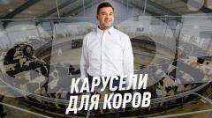Карусели для коров - СВОЁ с Андреем Даниленко