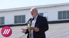 Лукашенко «продавили»? Почему белорусский лидер говорит о новой Конституции и перевыборах