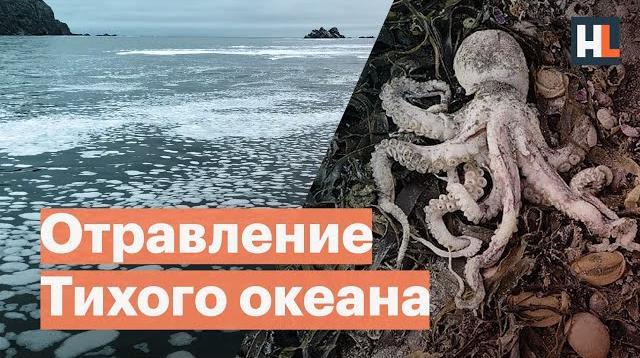 Алексей Навальный LIVE 12.10.2020. Отравление Тихого океана