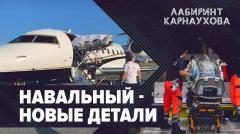 Навальный. Новые подробности. Лабиринт Карнаухова
