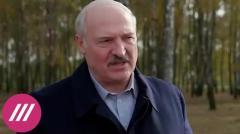 Дождь. Почему Лукашенко внезапно отменил свой митинг в Минске от 23.10.2020