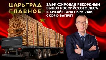 Царьград. Главное 22.10.2020. Зафиксирован рекордный вывоз российского леса в Китай: гонят кругляк, скоро запрет