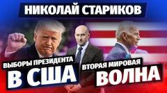 Николай Стариков. Выборы президента в США и Вторая Мировая волна от 04.11.2020