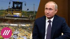 Дождь. Россия продлила санкции для ЕС. Как стране поможет отсутствие импортного пармезана от 22.11.2020