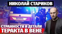 Николай Стариков. Странности и детали теракта в Вене от 05.11.2020