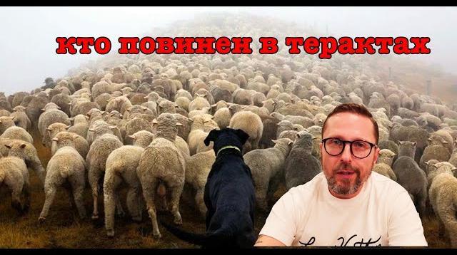 Анатолий Шарий 03.11.2020. По французской ситуации