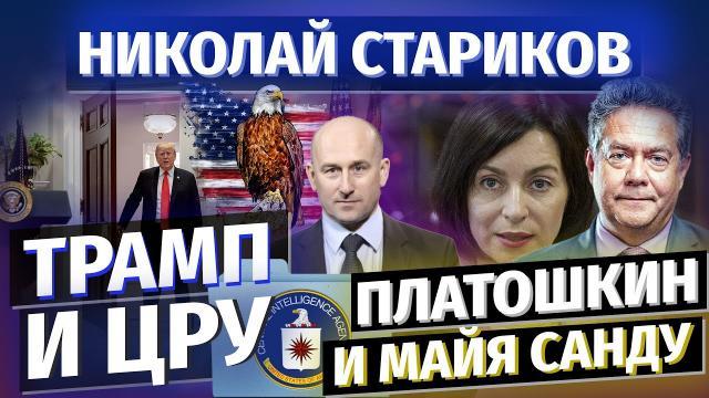 Николай Стариков 22.11.2020. Трамп и ЦРУ. Платошкин и Майя Санду