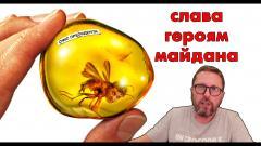 Анатолий Шарий. Зеленский поздравил героев от 22.11.2020