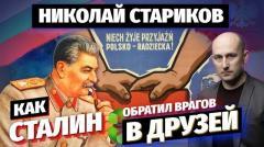 Николай Стариков. Как Сталин обратил врагов в друзей от 09.11.2020