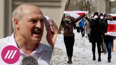 Дождь. Лукашенко хочет себя короновать. К чему готовятся протестующие в Беларуси от 21.12.2020