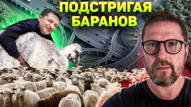 Анатолий Шарий 21.12.2020. 500 миллионов шерсти безропотных овец
