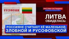 Литва обиделась: Россияне считают её маленькой, злобной и русофобской