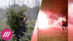 Новый год по-русски: кражи елок, баттл на фейерверках и автомат вместо салюта