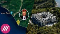 Дождь. Флешку с фото спрятал в ботинок: эколог рассказал, как побывал на территории «дворца Путина» от 20.01.2021