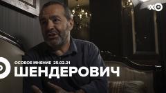 Особое мнение. Виктор Шендерович 25.02.2021
