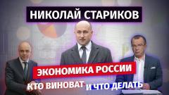 Николай Стариков. Экономика России: кто виноват и что делать от 19.02.2021