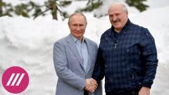 «Решается судьба Союзного Государства»: Что Лукашенко готов отдать Путину в обмен на поддержку России
