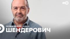 Особое мнение. Виктор Шендерович 11.02.2021