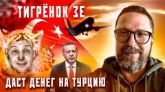 Анатолий Шарий. Поддержать Эрдогана от 15.04.2021