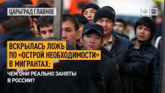 Царьград. Главное. Вскрылась ложь по «острой необходимости» в мигрантах: чем они заняты в России от 14.04.2021