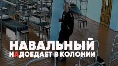Полный контакт. Навальный надоедает в колонии. «Пытки» конфетой и курицей. Киев провоцирует войну от 08.04.2021