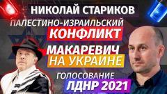 Николай Стариков. Палестино-израильский конфликт, Макаревич на Украине и голосование ЛДНР 2021 от 17.05.2021