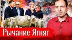 Константин Сёмин. Рычание Ягнят. АгитПроп от 03.05.2021