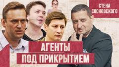 Навальный, Протасевич, Гудков - кроты или крысы? Европа грозит Белоруссии. СТЕНА СОСНОВСКОГО