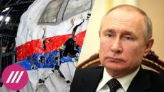 """Дождь. «Россия достаточно сильна, чтобы принять свои """"падения""""»: семьи жертв MH17 обратились к Путину от 06.06.2021"""