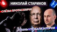 Слёзы Протасевича и планы глобализаторов