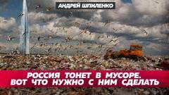 Свалки грозят здоровью 17 млн россиян. Мы знаем, что делать