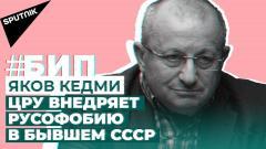 Яков Кедми о Белоруссии, Ближнем Востоке и Средней Азии (Sputnik на русском)