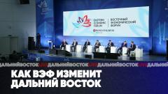 Как ВЭФ изменит Дальний Восток. Недоступная среда в Хабаровске. Дальний восток LIVE